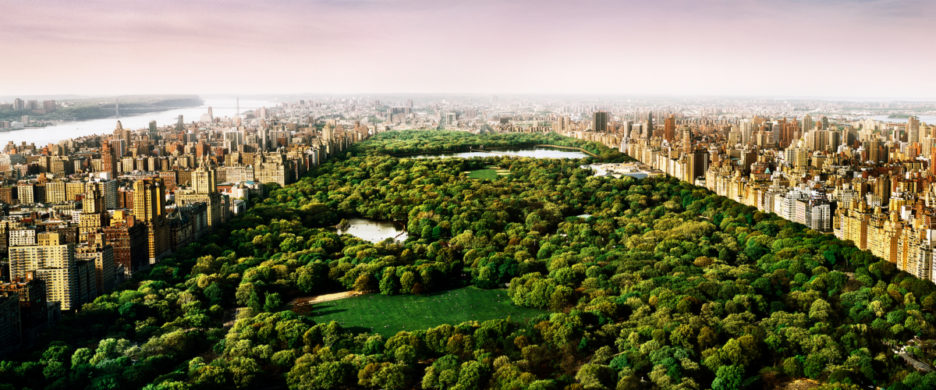 <div class='beschrijving'><span class='titel'>DREAMS OF CENTRAL PARK</span><br> PHOTOGRAPHY 54,8 X 125,9 CM (ED.15) AND 80,2 X 186,9 CM (ED.10) AND 105,6 X 247,8 (ED.7)</div>